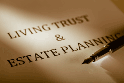 Self-Settled Asset Protection Trust